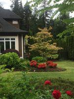 img_2076 at 26560 124 Avenue, Maple Ridge