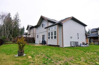 image-262050584-15.jpg at 13465 229 Loop, Silver Valley, Maple Ridge
