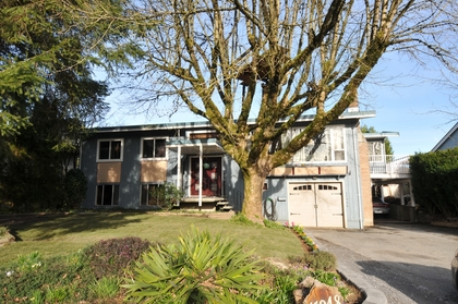 DSC_0068 at 11948 Wicklow Way, West Central, Maple Ridge