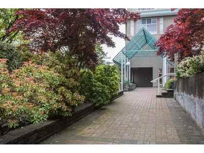 11609-227-street-east-central-maple-ridge-02 at 513 - 11609 227 Street, East Central, Maple Ridge