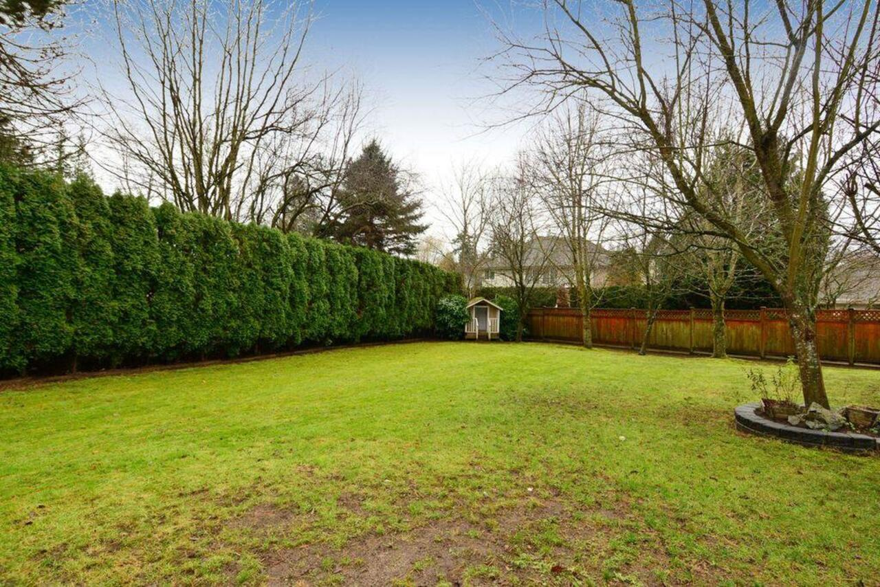 Backyard at 13152 20a Avenue, Elgin Chantrell, South Surrey White Rock
