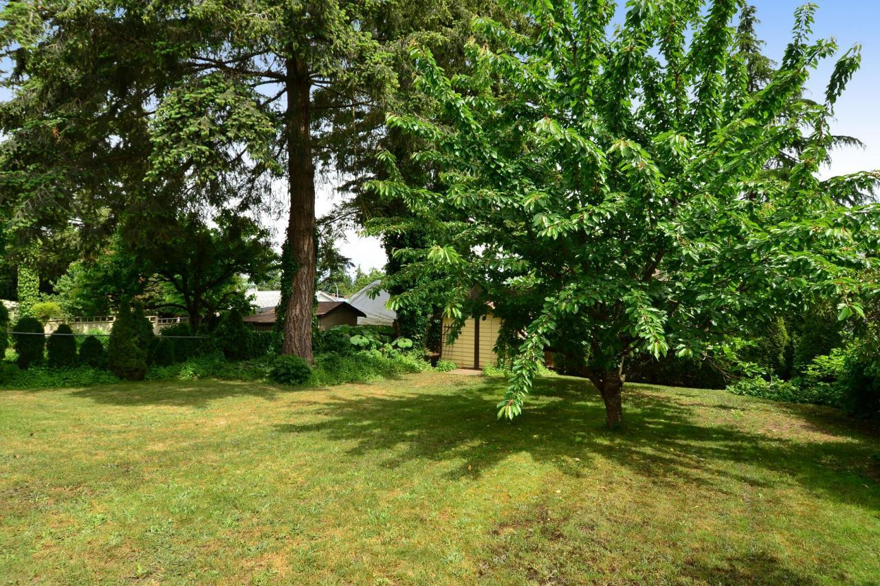 backyard at 2214 153a Street, King George Corridor, South Surrey White Rock