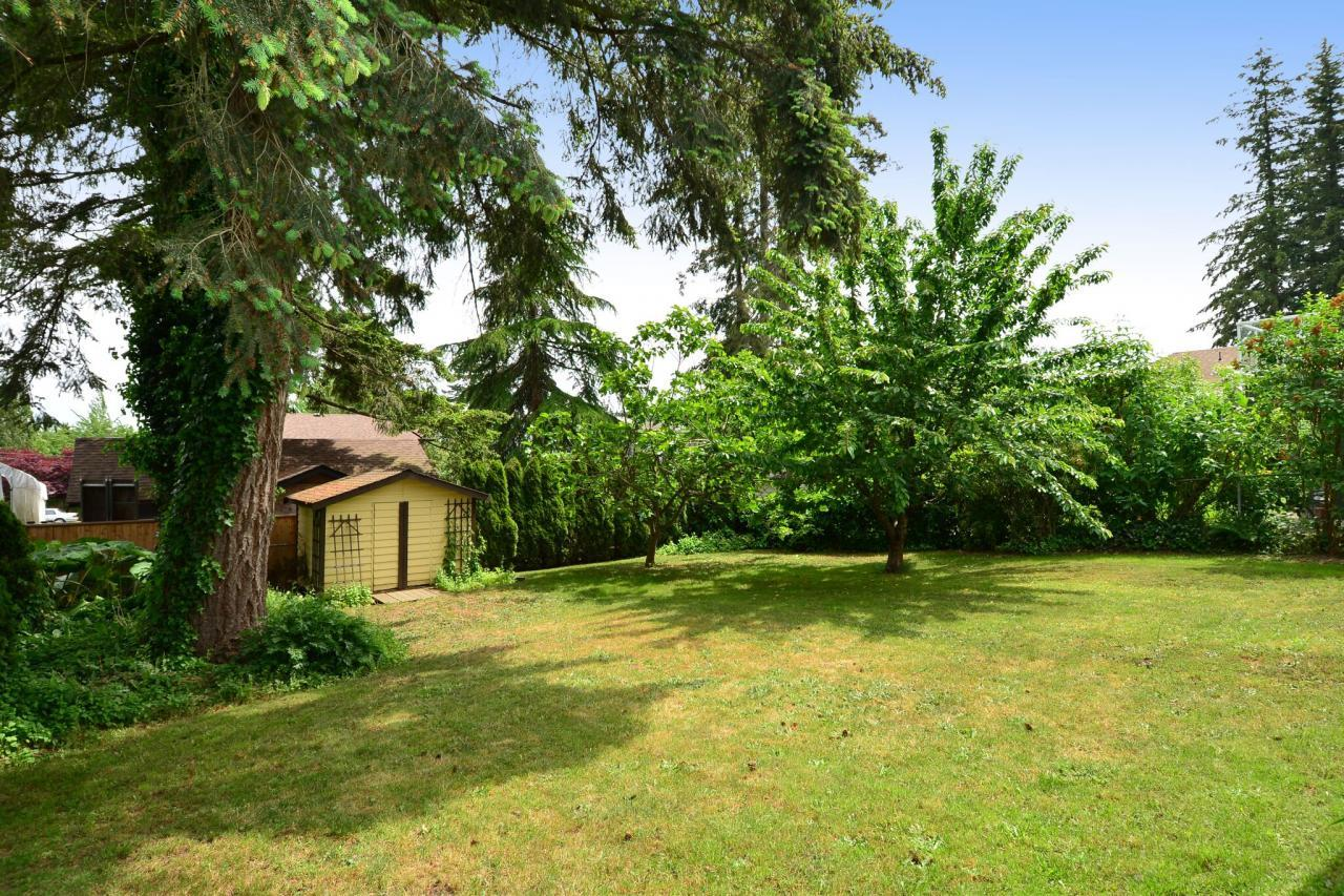 backyard1 at 2214 153a Street, King George Corridor, South Surrey White Rock