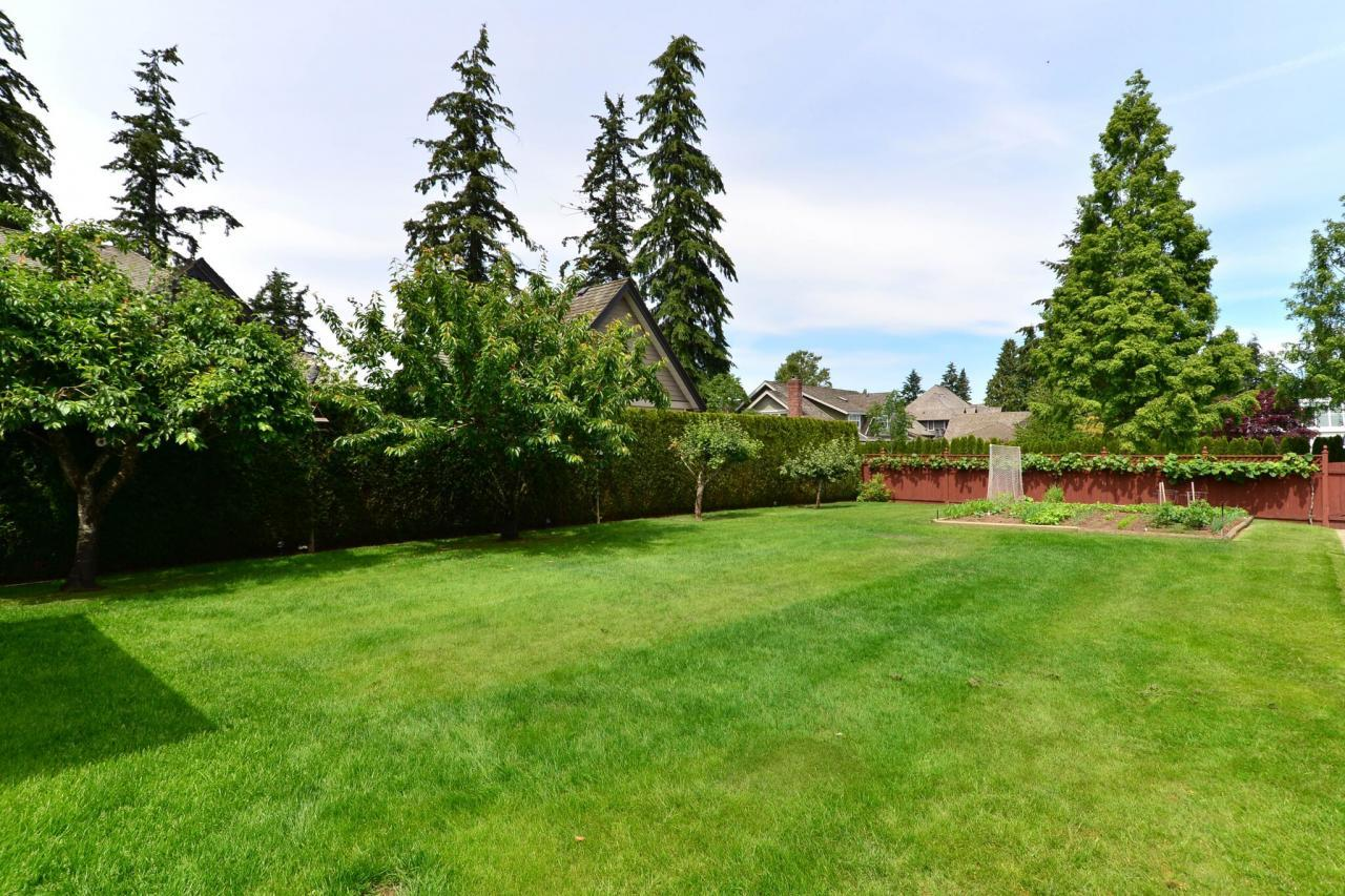 backyard4 at 2289 138a Street, Elgin Chantrell, South Surrey White Rock