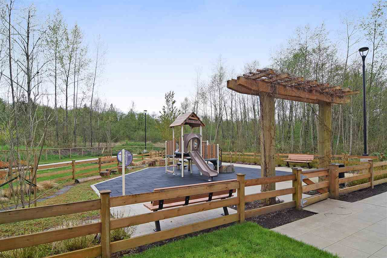 playground at 222 - 20728 Willoughby Town Centre Drive , Willoughby Heights, Langley