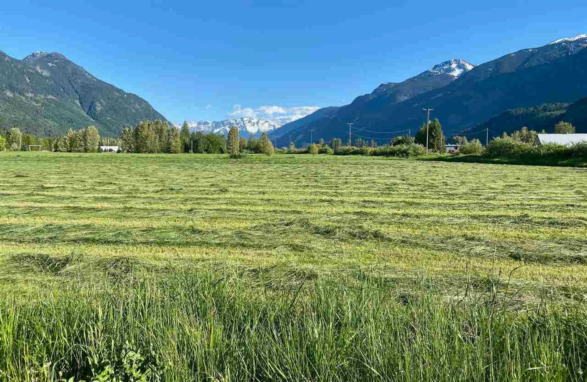 390-dill-road-pemberton-meadows-pemberton-17 at 390 Dill Road, Pemberton Meadows, Pemberton