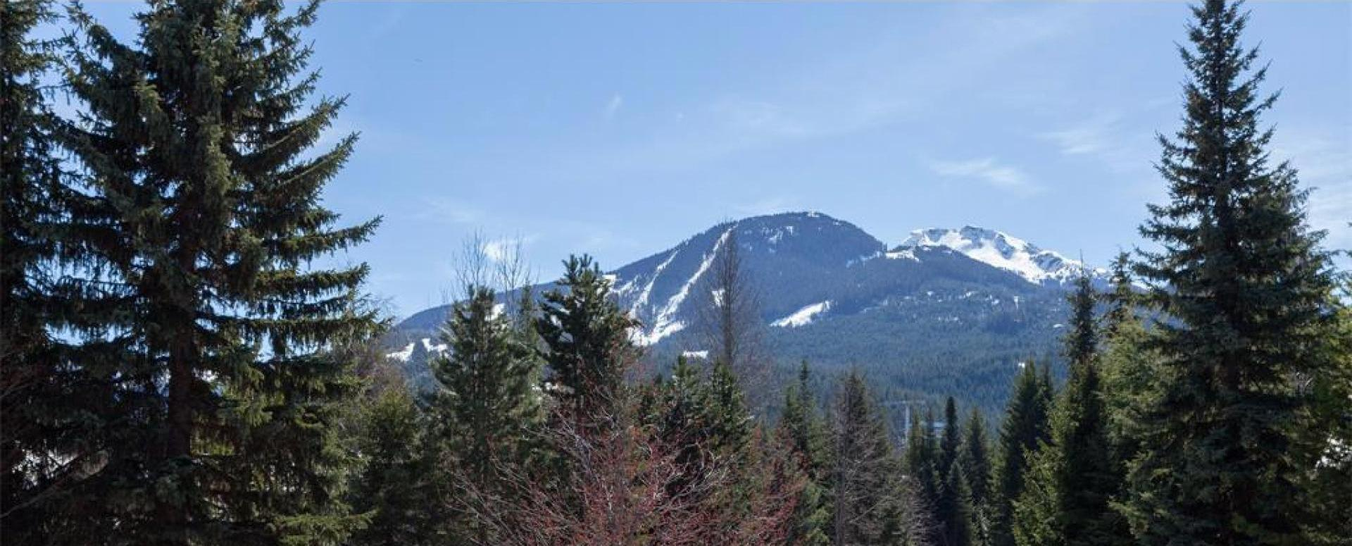 Whistler Cay Heights Real Estate Properties