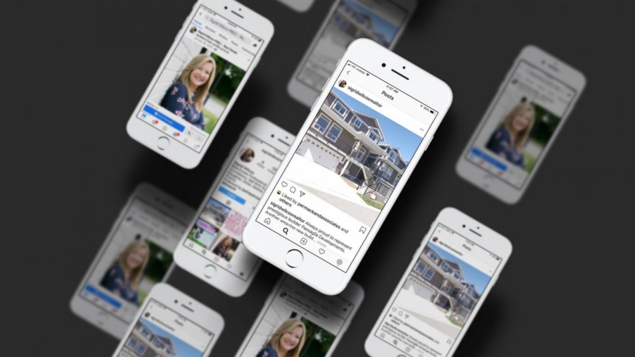 Instagram Commercials + Facebook Campaigns